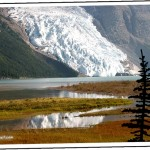 Passions Unleashed Alongside Mount Robson