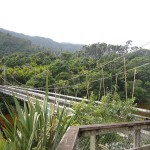 A New Zealand Great Walk: Heaphy Track, Part 1