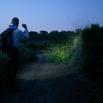 The Beautiful Benefits of Night Hiking