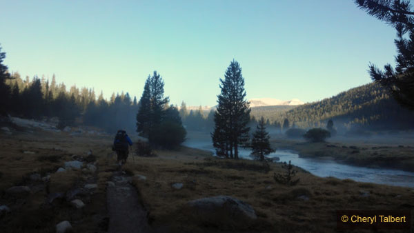 Heading down the Lyell Fork in early morning