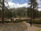Fish Creek Trail in San Gorgonio, California