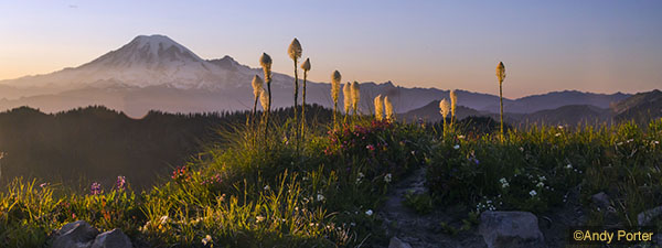 Goat Rocks Wilderness_3