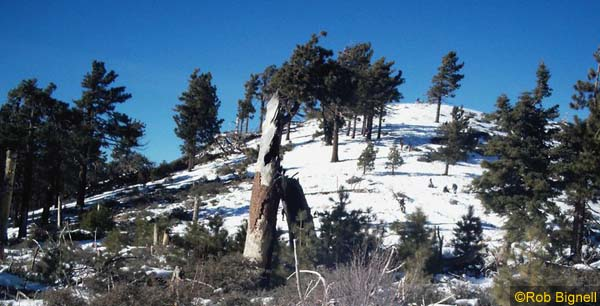 winter_hiking_3