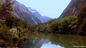 Reflections in the Clinton River, Milford Track.  Day 2