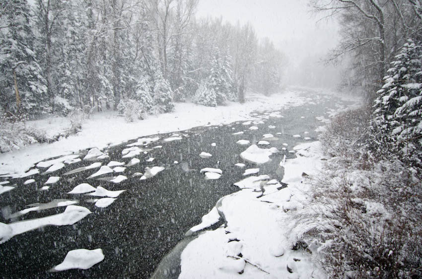 Snowstorm on Colorado's Eagle River