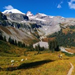 Record Set for Running Mount Rainier Wonderland Trail