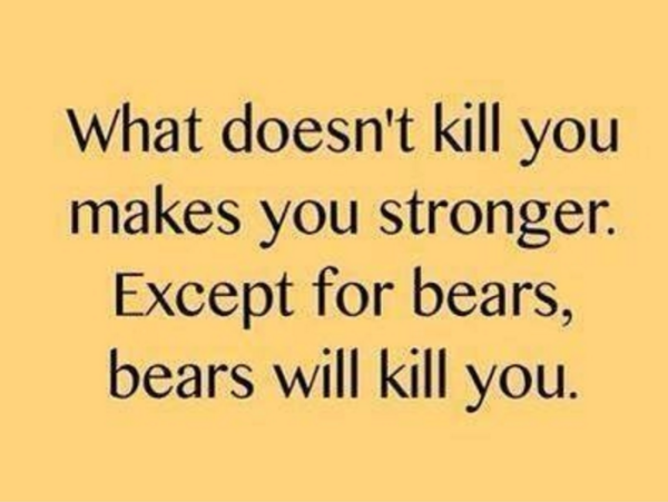 Bears will kill you