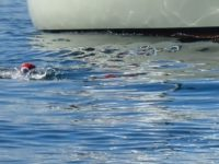 Breaking News – Puget Sound Open Water Swim Record Set