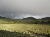 Adventures in Yellowstone's Black Canyon: The Trail to Nowhere