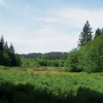 Washington Trails Association March Outlook
