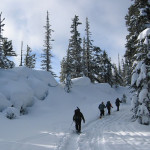 Snowshoeing Techniques and Safety