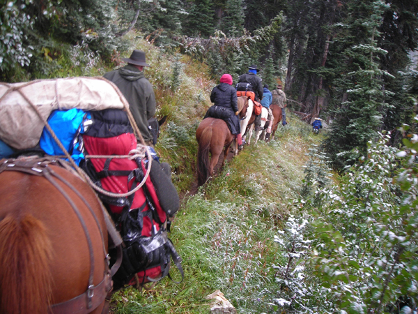 Northwest Horseback Search and Rescue (NWHSAR)