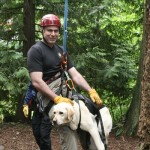 Search Dogs – KCSARA's Canines on the Trail