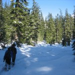 Commonwealth Basin Snowshoe