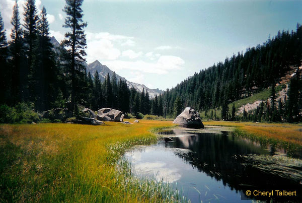 Grouse Meadow and Middle Fork Kern