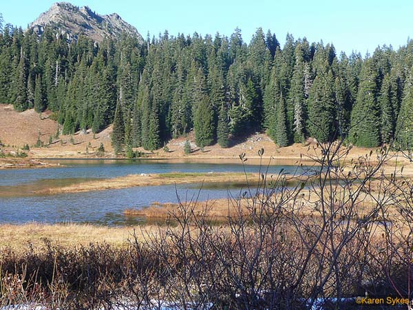 Sheep Lake 4
