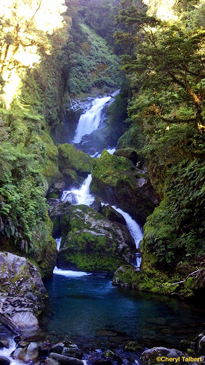 milford track 3
