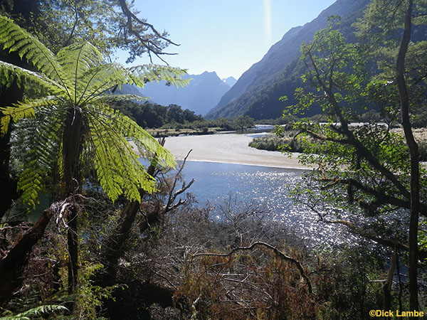 milford track 1