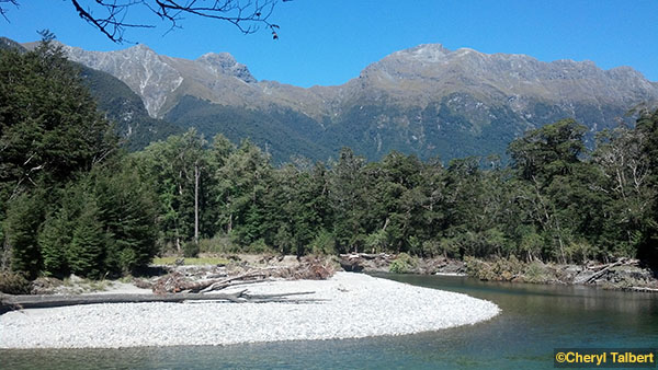 milford track 4