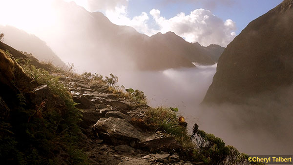 milford track 5