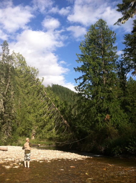 North Fork of the Coeur d' Alene River