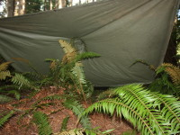 How to Make a Shelter in the Backcountry