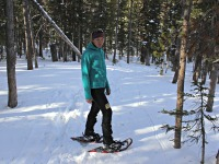 L.L. Bean Polartec Power Stretch Hoodie Review