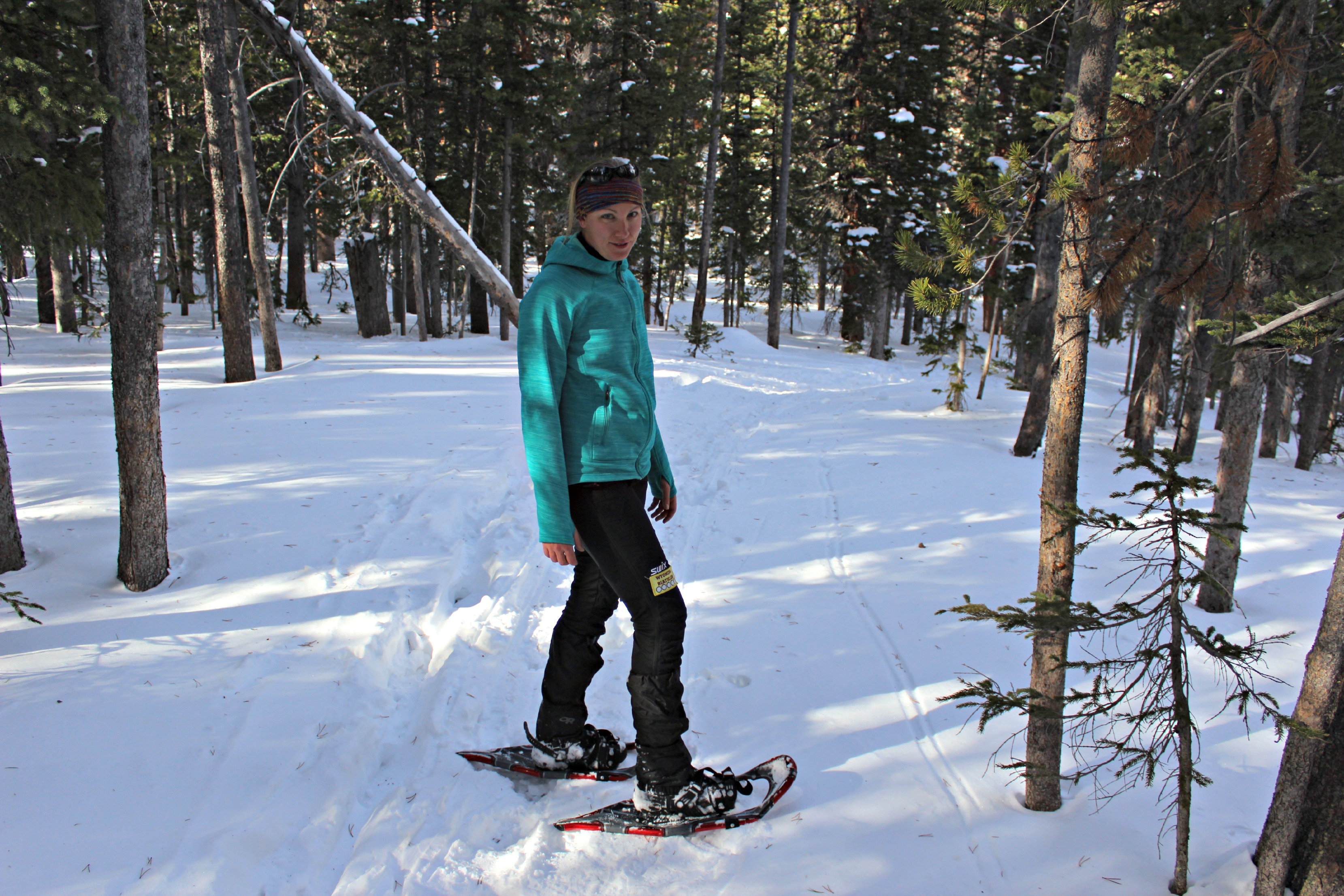 366a82018f L.L. Bean Polartec Power Stretch Hoodie Review - Seattle Backpackers ...