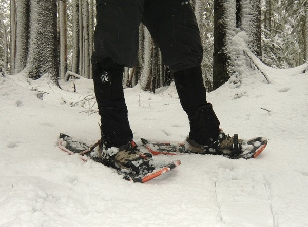 Atlas Aspect Snowshoes 1